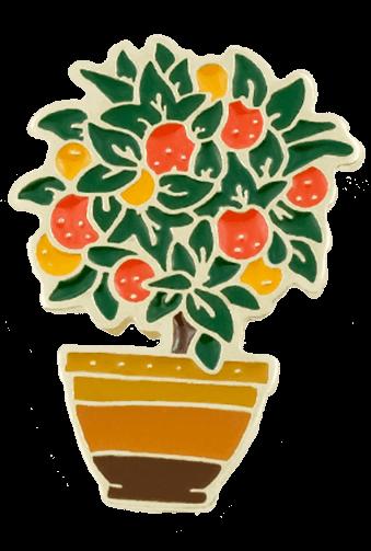 Rośliny Drzewko